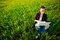 Stock Image : Woman in a green field with a laptop. summer