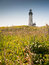 Stock Image : Yaquina Head Lighthouse