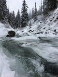 """ del ï¸ del """"del  del â del fiume del ghiaccio e della neve fotografia stock libera da diritti"""