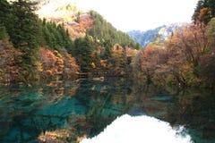 """ """"Five de Lake†de la flor de Jiuzhaigou's en una tarde tranquila del otoño Fotografía de archivo libre de regalías"""