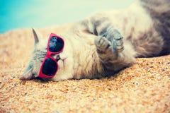 ¡ De Ð à la détente sur la plage Photo libre de droits