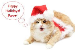 ¡Buenas fiestas! Foto de archivo libre de regalías