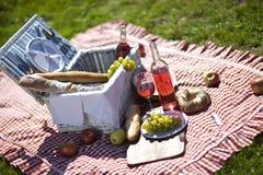 ¡Comida campestre y sol! fotografía de archivo libre de regalías