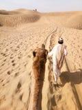 ¡El bosque es misterio pero el desierto es realidad!! fotos de archivo libres de regalías