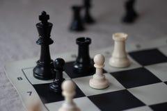 ¡El compañero del ajedrez con el grajo y el empeño, da jaque mate! fotografía de archivo libre de regalías