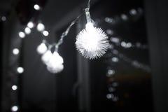 ¡Feliz Año Nuevo nunca!!!!!! Fotos de archivo libres de regalías