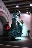 ¡Flamenco! Fotografía de archivo