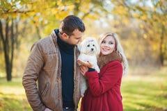 ¡Gran hora para el paseo! Pares hermosos de la familia con el perro maltés lindo blanco que pasa tiempo en parque del otoño fotos de archivo libres de regalías