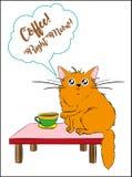 ¡Maullido correcto del café! ilustración del vector