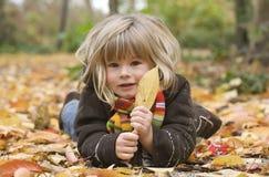 ¡Mire una hoja! Foto de archivo libre de regalías