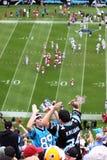 ¡NFL - el animar de los ventiladores! fotografía de archivo libre de regalías