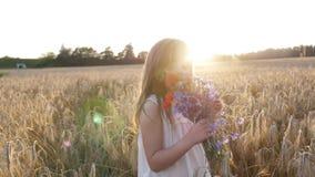 ¡Niña en un campo de trigo en la puesta del sol con un ramo de flores salvajes! almacen de metraje de vídeo
