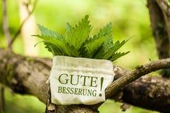 ¡Ortiga tacaña con la palabra Gute Besserung! Imagen de archivo
