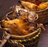 ¡Patos y gallinas para la venta! Fotos de archivo