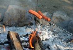 ¡Perritos calientes del fuego del campo! imagen de archivo