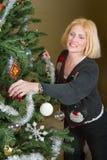 ¡Sandy! ¡Adorne por favor el árbol! 5 Fotos de archivo libres de regalías