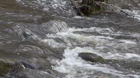 "¡TA del kÅ del río DÅ el ""fluye en Neris Regional Park en Lituania"