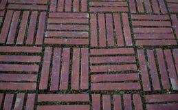 ¡Tenga cuidado el piso! fotografía de archivo libre de regalías