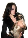 ¡Whith de la charla yo gatito! Imágenes de archivo libres de regalías