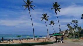 ³ MaceiÃ, AL, Бразилия - 8-ое мая 2019: Пляж Jatiuca видеоматериал