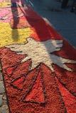 ³ n Nicaragua de Alfombras de aserrÃn Semana Papá Noel Leà imágenes de archivo libres de regalías