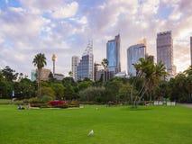 1º de abril de 2018, Sydney, Austrália - paisagem real do jardim botânico em um fim de semana imagem de stock royalty free
