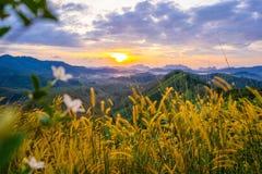 1º de janeiro de 2018 - nga de Phang:: Nascer do sol na província do nga de Phu Ta Tun Viewpoint Phang foto de stock royalty free