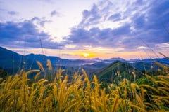 1º de janeiro de 2018 - nga de Phang:: Nascer do sol na província do nga de Phu Ta Tun Viewpoint Phang imagens de stock royalty free