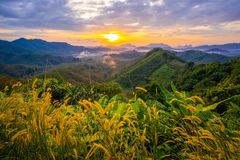 1º de janeiro de 2018 - nga de Phang:: Nascer do sol na província do nga de Phu Ta Tun Viewpoint Phang imagem de stock