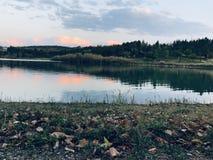 ¼ ŒSunset, herbe de Landscapesï de ŒGreen de ¼ de sunsetï photographie stock