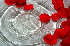 ¼ heureux de Dayï de Valentine Images libres de droits