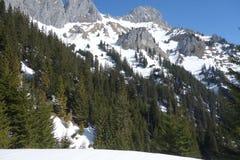 ¼ Rote h Áustria de Flà da montanha da vista imagens de stock royalty free