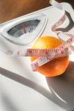 ¿Cuánto una naranja pesa? Imágenes de archivo libres de regalías