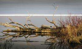¿Espejo del espejo en el lago, que el más justo de ellos todos? imagenes de archivo