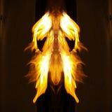 ¿Firemoth? Fotos de archivo