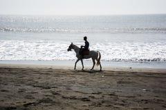 ¿Quiera tener un paseo del caballo? Imagen de archivo