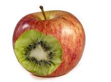 ¿Una manzana o un kiwi? Foto de archivo