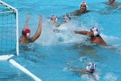 ¿Water polo/donde está la bola? Fotografía de archivo
