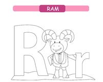 Letter R and funny cartoon ram. Animals alphabet a-z. Cute zoo alphabet in vector for kids learning English vocabulary. Printable