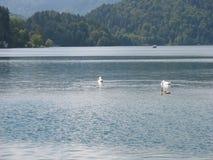 ×piękni jeziora Zdjęcie Stock