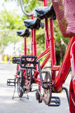 ฺBicycle in the park Royalty Free Stock Images
