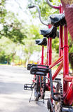 ฺBicycle in the park Royalty Free Stock Image