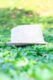Hat in the grass. straw hat Royalty Free Stock Image