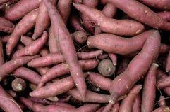 ็Heap of cassava roots. Heap of cassava roots in the fresh market royalty free stock photo