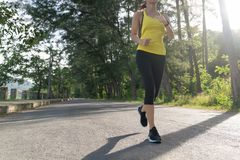 à ¹  junger Eignungssport-Frauenläufer, der auf tropischer Parkspur, junge Eignungsfrau läuft an der tropischen Schneise des Mor stockbild