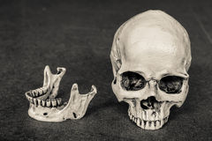 à ¹ ‡ ีHuman在木板背景的头骨倾斜 图库摄影
