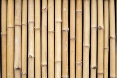 ฺBamboo Wand Lizenzfreie Stockbilder