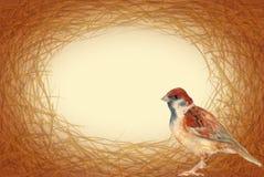 ฺBird巢框架 免版税库存图片