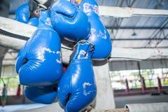 ฺBlue泰拳垂悬在把rin装箱的角落的拳击手套 图库摄影