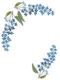 ฺBlue花 在白色背景的手拉的水彩绘画 也corel凹道例证向量 免版税图库摄影
